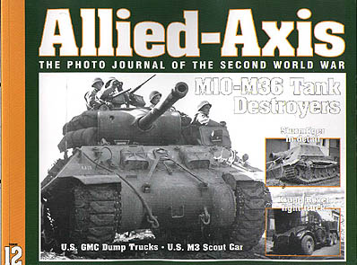 axis and allies essays
